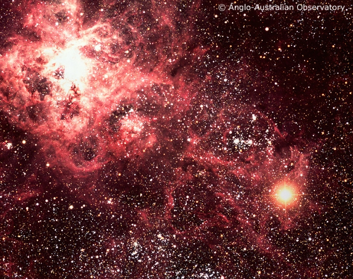 Image of the Large Magellanic Cloud from the Anglo-Australian Observatory showing the Tarantula Nebula (upper left of the image) and the type II supernova called Supernova 1987a (lower right of the image).