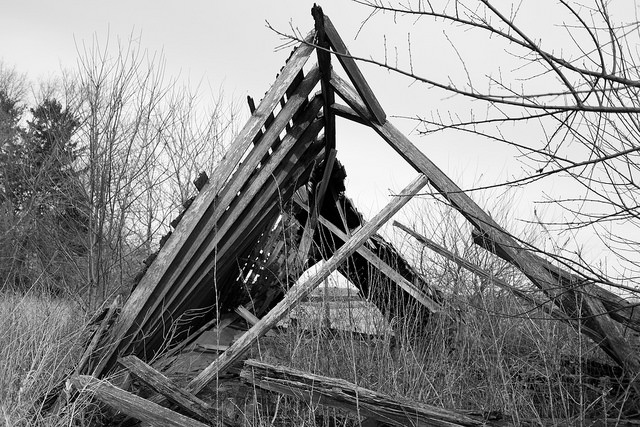 image of a collapsed wooden structure in the woods