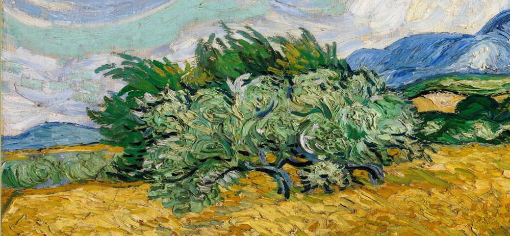 van gogh painting of a bush