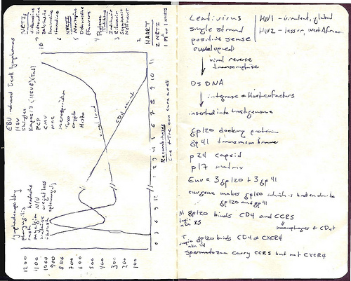 Image of Moleskine notebook with handwriting and graph