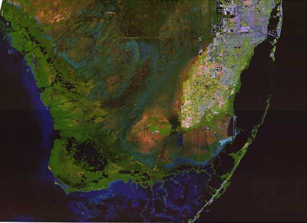 Landsat image of everglades showing development in Miami and Fort Lauderdale