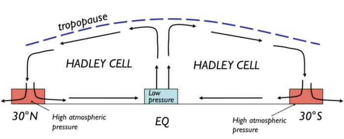 Diagram showing the flow of air in the Hadley cells