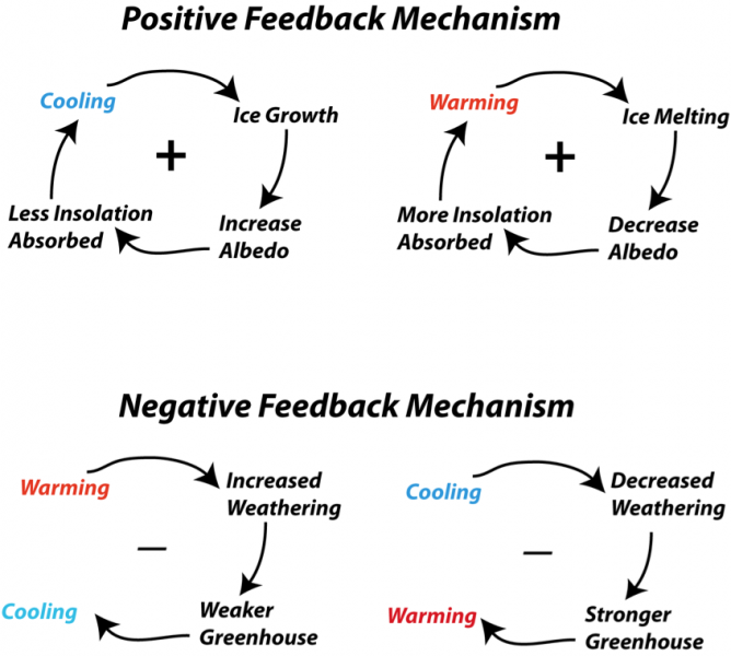 Schematic diagram representing some of the feedback mechanisms that are important for the earth's climate system
