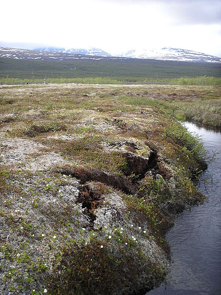 Permafrost in Sweden (cracks are due to thawing)