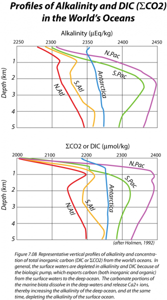 Graph of profiles of alkalinity and DIC in the world's oceans, see text description in link below