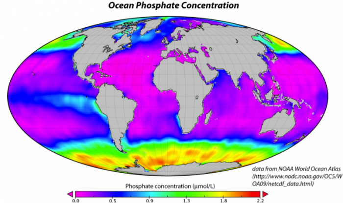 World map to show ocean phosphate concentration