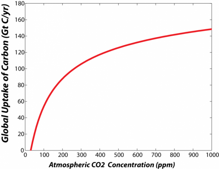 Graph showing how the rate of photosynthesis increases as concentration of CO2 in atmosphere increases, see text below