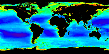 Colored world map of chlorophyll concentration