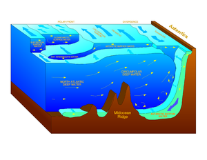 Schematic diagram illustrating formation of Antarctic Bottom Water (AABW) in the southern part of the South Atlantic