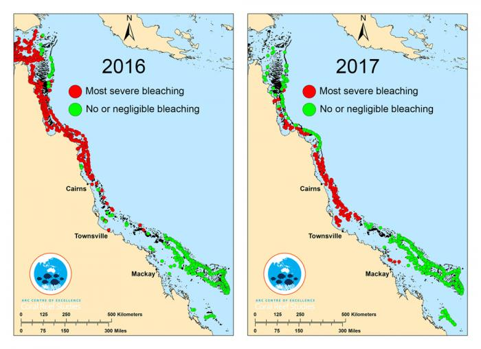 Map of Great Barrier Reef bleaching in 2016 and 2017