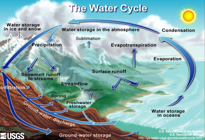 Schematic of the hydrologic cycle