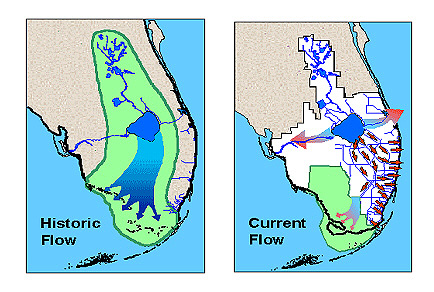 Schematic showing changes in the drainage of the Everglades as a result of development in south Florida