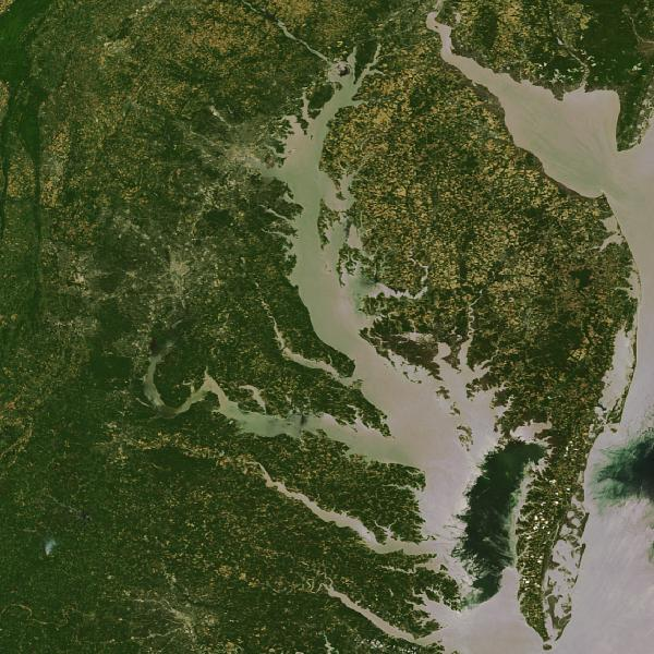 Landsat image of Chesapeake Bay