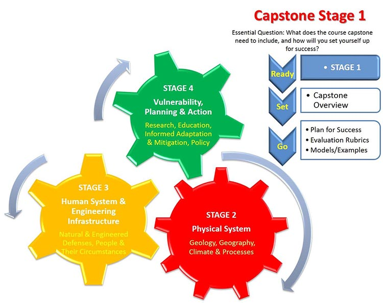 Infographic for Capstone Stage 1