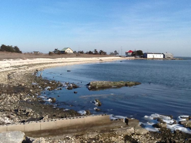 View northeastward onto Chincoteague Bay and toward Assateague Island from Franklin City, Virginia shows erosion and retreat of shoreline.