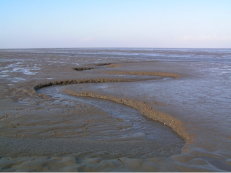 Muddy tidal flat in Schleswig-Holstein Wadden Sea National Park of northern Germany.
