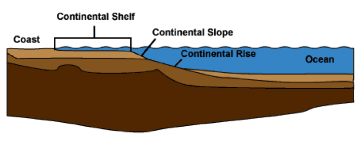 Cross sectional profile continental margin. Coat, continental shelf under water, continental slope, continental rise and finally ocean
