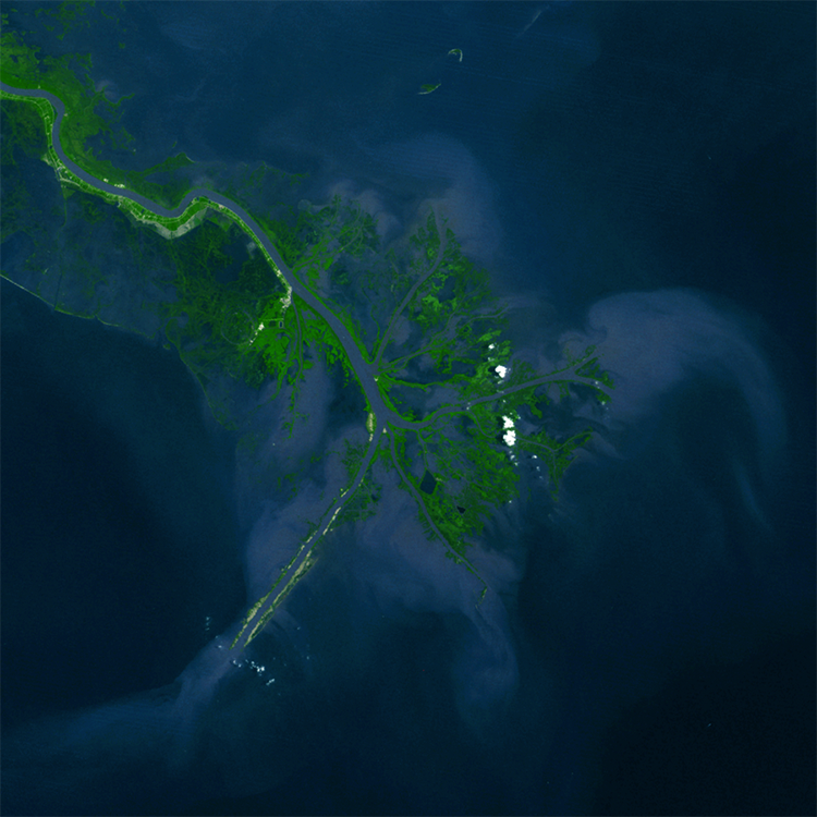 Satellite image of Mississippi River delta that has built into northern Gulf of Mexico along south-central U.S. described in caption