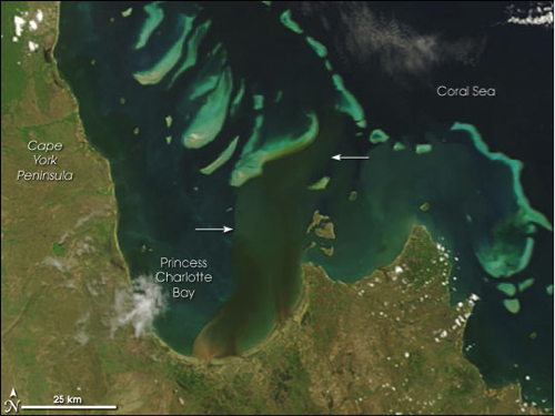 Satellite image of portion of Great Barrier Reef on east coast of Australia, described in caption.