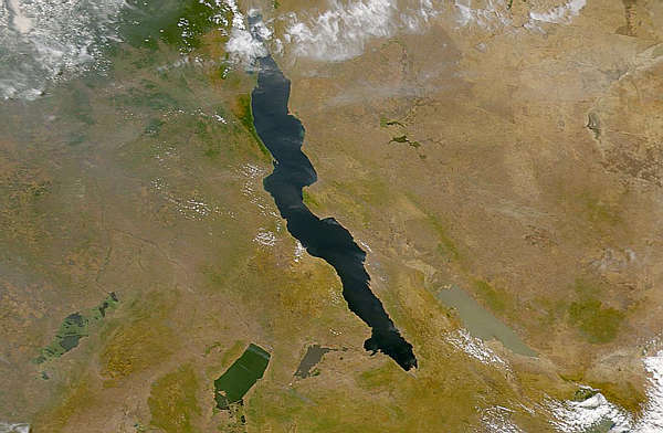 The lakes of the African Rift Valley exhibit wide variations in water color as can be seen in this SeaWiFS image.