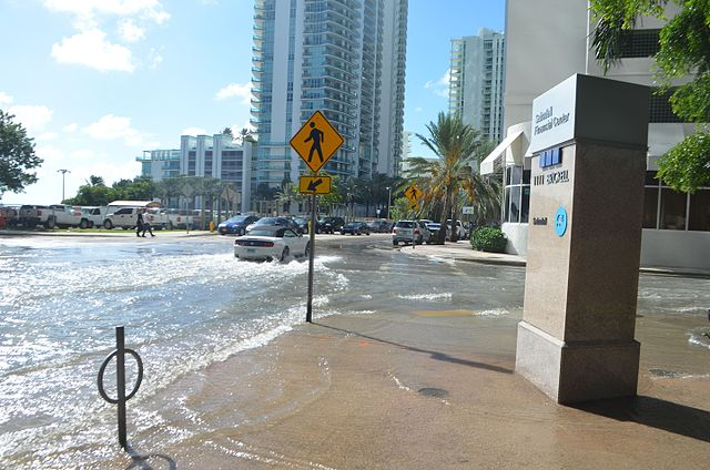 Miami flooding in the streets with cars driving through the water