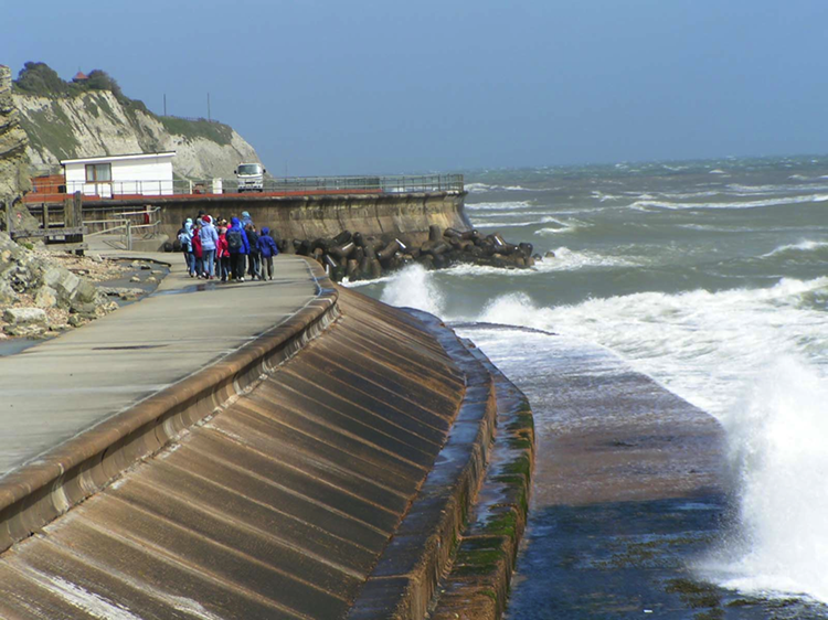 Engineering structures protecting the coastline, described in caption.