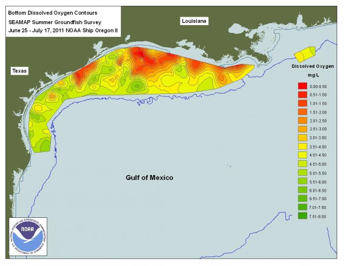 Shows dissolved oxygen levels in the Gulf of Mexico Summer 2011, clearly demarcated dead zone extends along coastline near Louisana