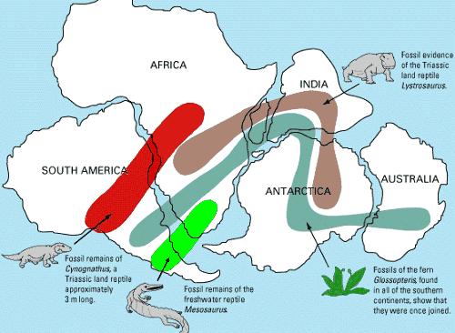alfred wegener earth 520 plate tectonics and people