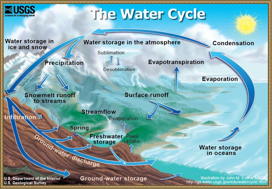 info graphic of the water cycle. See link in caption for text description