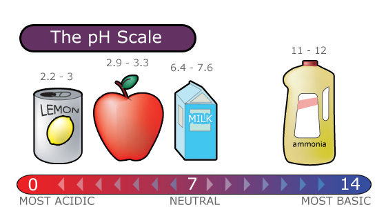 The pH Scale ranges from zero to fourteen - (Lemons are 2.2 to 3.0, apples are 2.9 to 3.3, milk is 6.4 to 7.6, and ammonia is 11 to 12.)