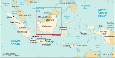 Map of Indonesia with Borneo island highlighted.