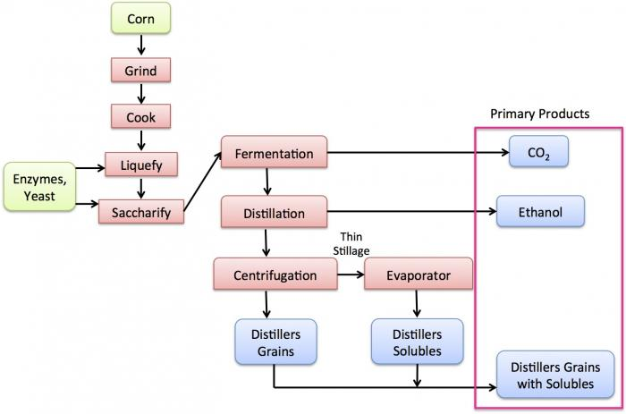 diagram of the dry grind ethanol process, see text description below