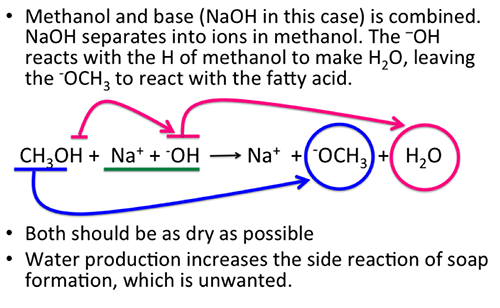 Methanol and NaOH produces sodium ions, water and -OCH3
