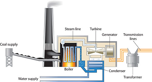 schematic of coal-fired power plant as described in text above, showing water supply, coal supply, boiler, steam line, turbine, generator, condenser, transmission lines, and transformer)