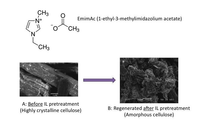 Figure 26: EmimAc chemical structure and cellulose before and after IL pretreatment.
