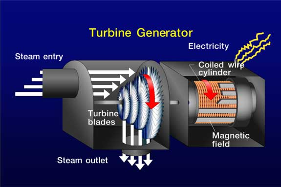 steam turning turbine connected to generator as described in text above; turbine is connected to a generator (wire coil and magnetic field generating electricity)