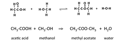 Reaction of acetic acid with methanol to form methyl acetate and water.