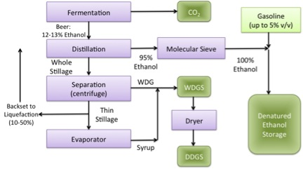 Product recovery diagram of ethanol and other products.