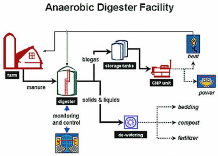 12 1 Anaerobic Digestion Egee 439