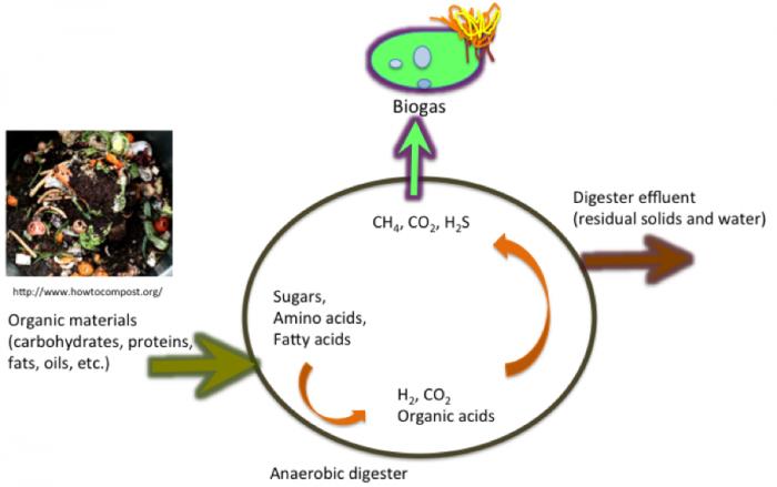 12 1 Anaerobic Digestion | EGEE 439: Alternative Fuels from Biomass