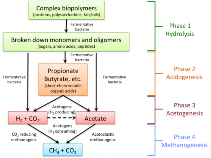 12.1 Anaerobic Digestion   EGEE 439: Alternative Fuels from Biomass Sources