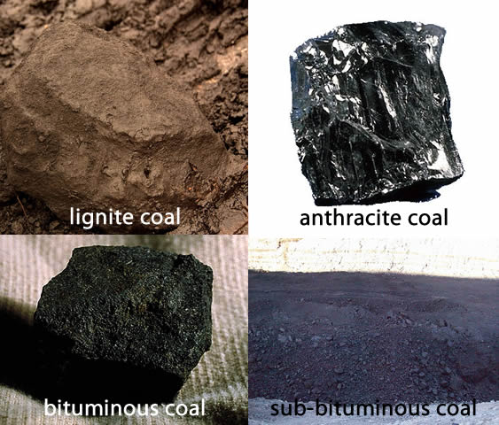 Four types of coal: lignite(black), anthracite(shiny black), bituminous(black), and sub-bituminous(dull black)