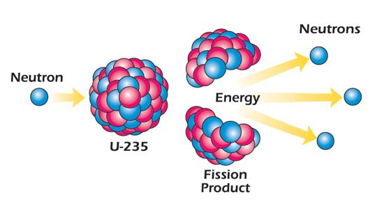 graphical depiction of fission, where one uranium 235 atom is split into several lighter elements, neutrons and energy