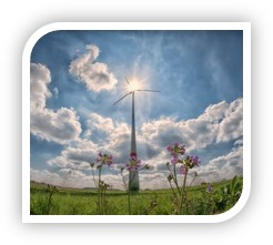 wind turbine on sunny day with flowers in the foreground