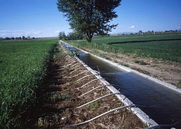 irrigation of crops