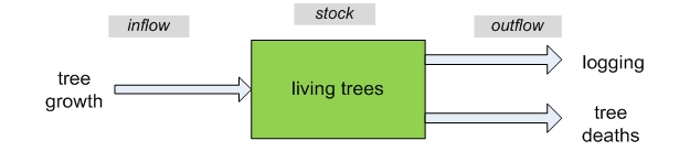 A central box labeled stock of living trees & an inflow arrow labeled tree growth & outflow arrows labeled logging & tree deaths