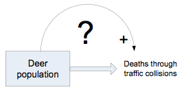 Flow diagram with box denoting stock of deer population and outflow arrow of deer traffic deaths; feedback arrow from box to outflow arrow is marked with + and ? signs