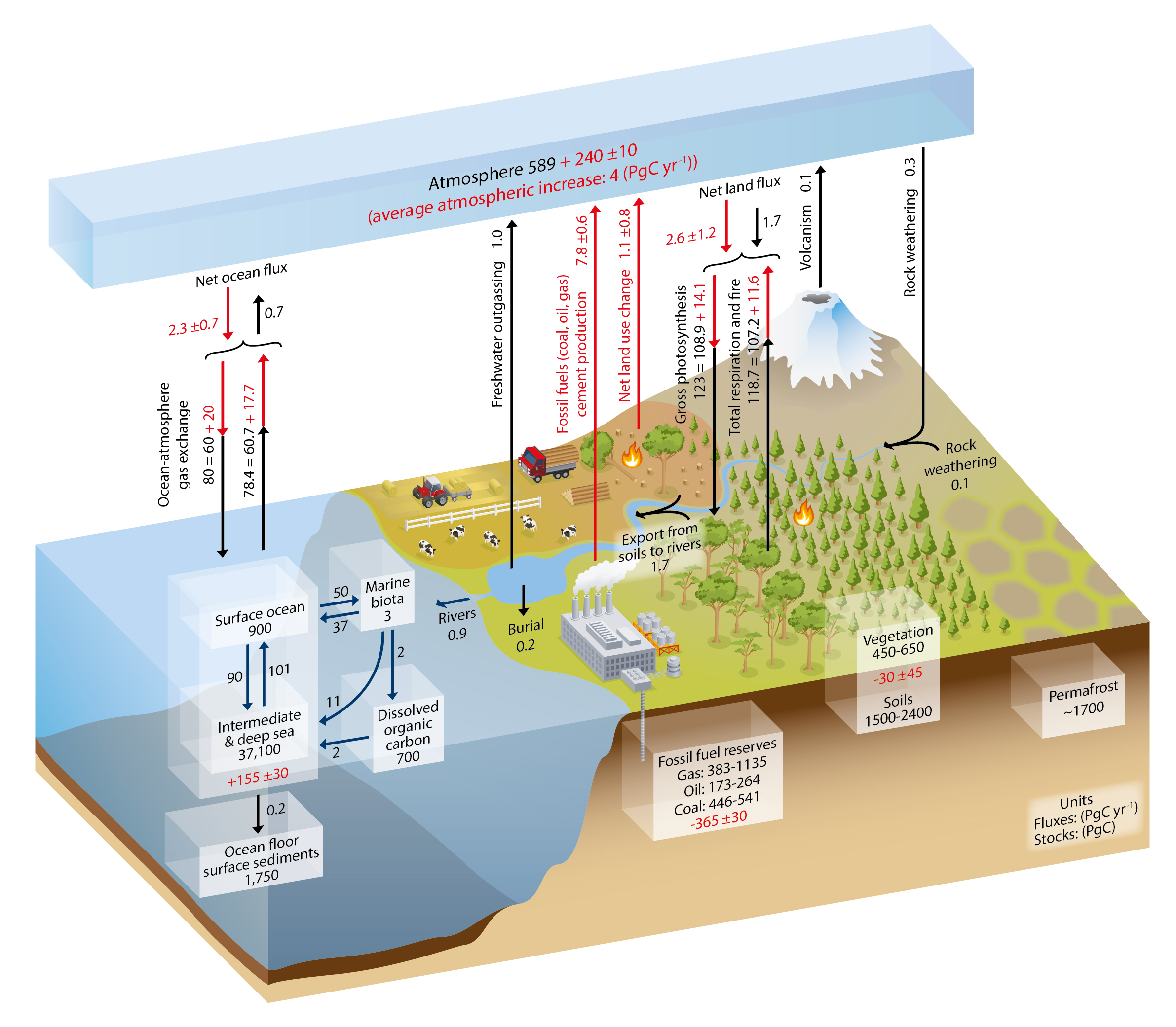 This image shows an illustration of the various sources and sinks of carbon dioxide. The natural emissions are significantly higher 