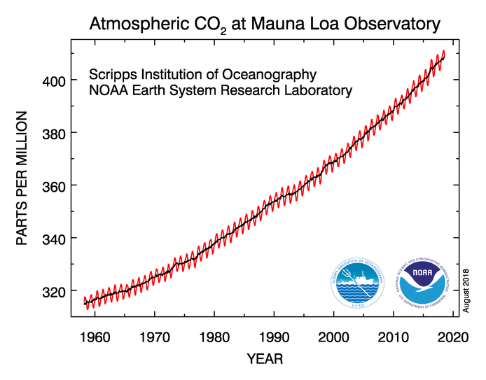 Atmpospheric concentration of carbon dioxide since 1958, as measured at the Mauna Loa Observatory in Hawaii.