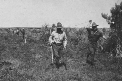 Surveying team in field, measuring baseline distance with a metal tape.